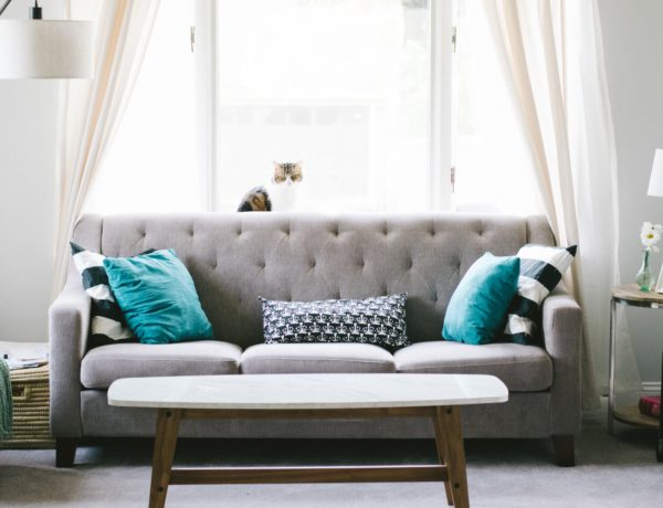Learn how throw pillows have not only a place but a purpose in every room in your home